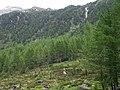 Knuttental,Valle dei Dossi - panoramio (18).jpg