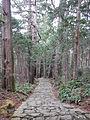 Kumano Kodo pilgrimage route Daimon-zaka World heritage 熊野古道 大門坂46.JPG