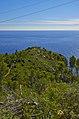 La cima della falesia, dall'entroterra - panoramio.jpg