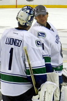 2013 14 Vancouver Canucks Season Wikipedia