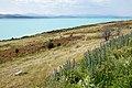 Lake Pukaki, New Zealand 10.jpg