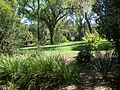 Lake Wales FL Bok Tower gardens05.jpg