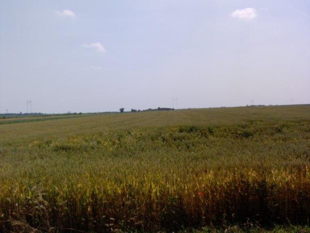 LandscapeTemerin