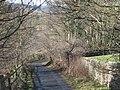 Lane near the A69 - geograph.org.uk - 1269221.jpg
