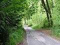 Lane through West Woods - geograph.org.uk - 1318981.jpg