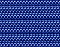 Large tileable plane of compound eyes under electron microscope.jpg