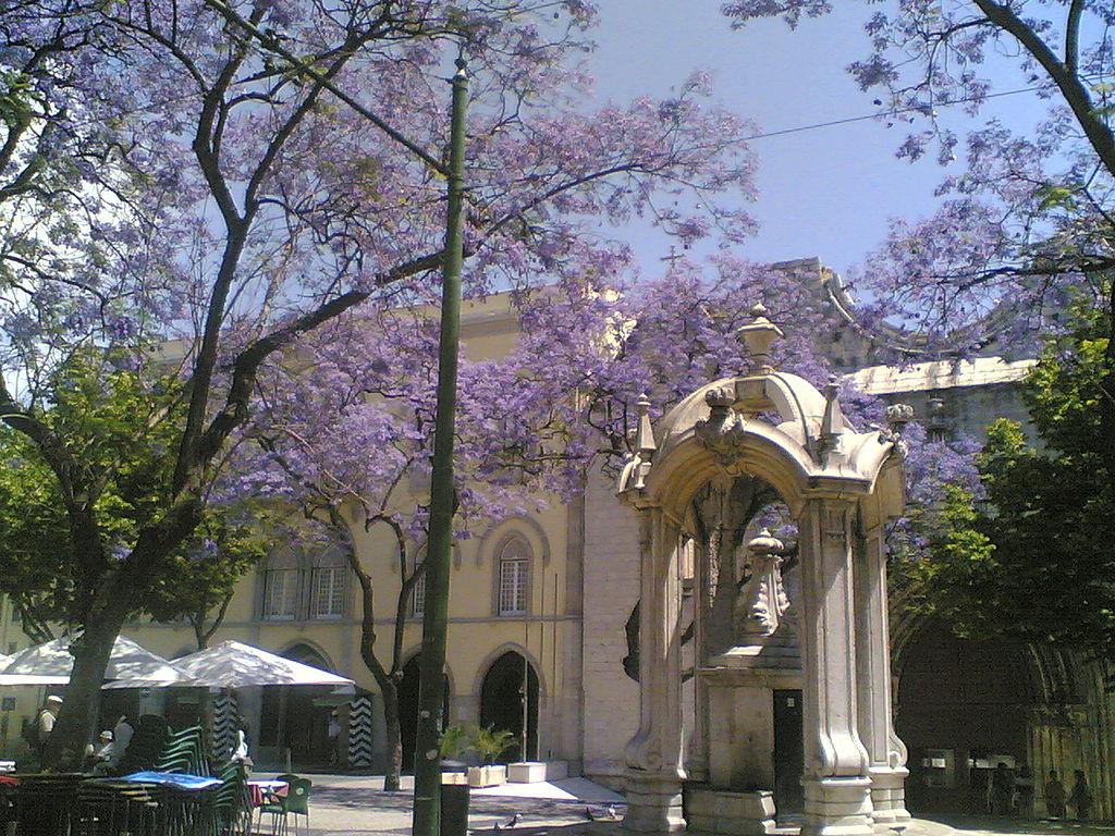 Plaza do Carmo