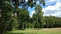 Lasy kostkowskie , On a hiking trail through Kostkowo woods - panoramio.jpg