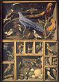 Leroy De Barde, Alexandre-Isidore — Réunion d'oiseaux étrangers placés dans différentes caisses.jpg