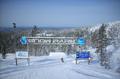 Levi snowpark.png