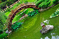 Lightmatter japanese garden bridge.jpg