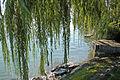 Lindau Promenade (9535326123).jpg