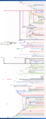 LinuxDistroTimeline.png