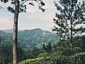 Little Adam's Peak (5).jpg