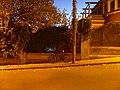 Llentiscles de carrer de Sant Pere Claver P1520438.jpg