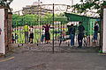 Loakes Park - the final day.jpg