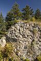 Lochenfels-Bronnen Massenkalk Jura Schwaebische Alb.jpg