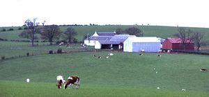 Lochlea, South Ayrshire - Lochlea Farm