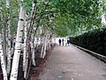 London, UK - panoramio (183).jpg