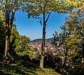 Lorettoberg-Ansichten (Freiburg im Breisgau) jm54272.jpg