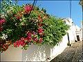 Loule (Portugal) (49836183608).jpg