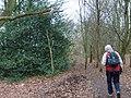 Lower Avenue Path - geograph.org.uk - 648306.jpg