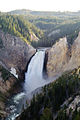 Lower Yellowstone Falls, Yellowstone National Park (7742958814).jpg