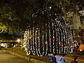 Lowndes County 2014 Tree Lighting Ceremony 04.JPG