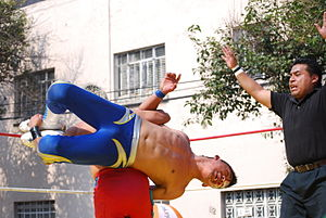 Shockercito - Shockercito performing his Reinera finisher on Mercurio.