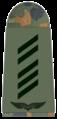 Luftwaffe-051-Oberstabsgefreiter.png