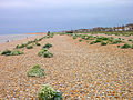 Lydd-on-Sea beach, Kent, UK.jpg