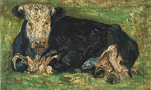 A black cow with a white face lying down in a green meadow facing the viewer.