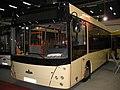 MAZ 206 - Transexpo 2008.jpg