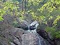MONKEY FALLS,VALPARAI - panoramio.jpg