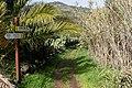 Macizo de Teno, Tenerife 16.jpg