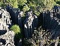 Madagascar tsingy Igor Sid.jpg