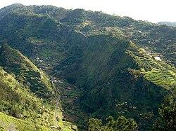 Madeira Tabua.JPG