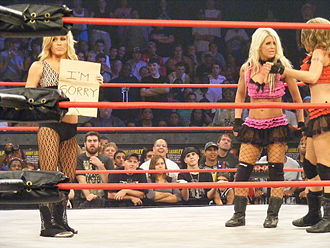 The Beautiful People (professional wrestling) - Rayne's apology was written on a brown paper bag