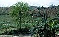 Mahadevsthan Mandan, Nepal - panoramio (4).jpg