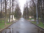 Main alley of the Memorial park (Moscow).JPG