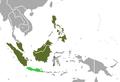 Malayan Civet area.png