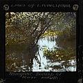 Mangrove Swamp at River Mouth, Malawi, (s.d.) (imp-cswc-GB-237-CSWC47-LS5-1-007).jpg