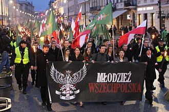 All-Polish Youth - March of All-Polish Youth in 2013