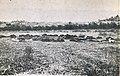 Massacre of 40 Macedonians in Berovo-1944.jpg