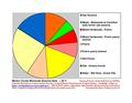 Meeker Co Pie Chart New Wiki Version.pdf