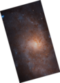 Messier33 - HST - Heic1901a (North is vertical).png