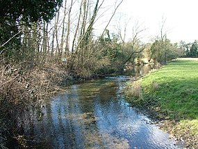 Mimram River Near Tewin - geograph.org.uk - 130244.jpg