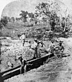Miners working at St. Leonard's Tin Mine, Sugarloaf Creek near Stanthorpe, ca. 1873 (5076816809).jpg