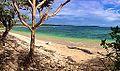 Moana Beach.jpg