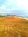 Monrovia, Liberia - panoramio (83).jpg